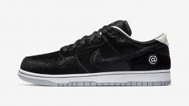 Photo of Nike SB Dunk Low Medicom BE@RBRICK Raffles & Release Links